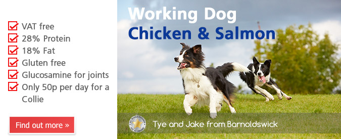2013 Working Dog Chicken & Salmon