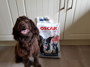 Bear posing with his bag of Oscars