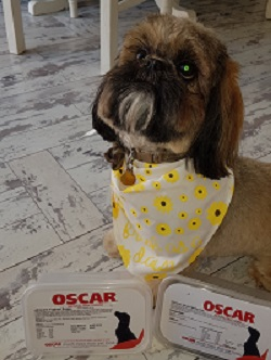 Teddy with two boxes of Oscar treats