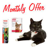Worming Monthly Offer